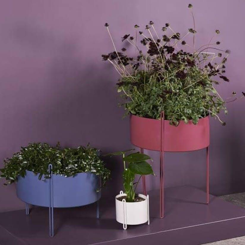 woontrend 2020 Purple Rain WOUD plantenbak Pidestal